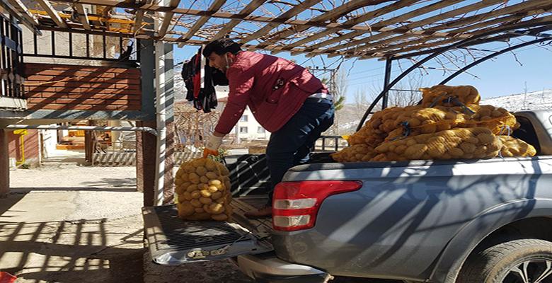 Yahyalı'da 100.000 kg Patates Ücretsiz Dağıtıldı