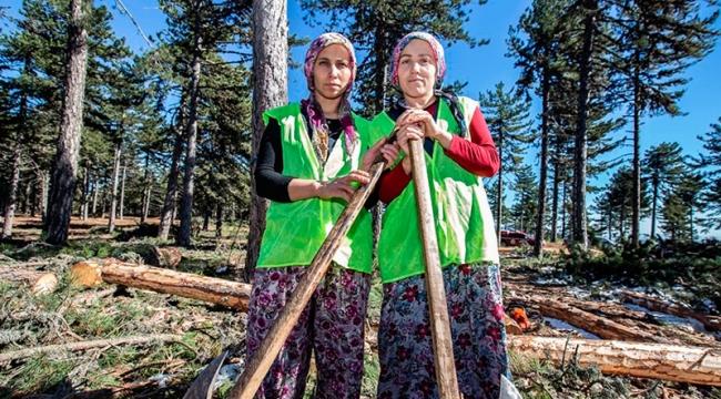 Ekmeğini Ormandan Çıkaran Kadın: Sevil BAYAT