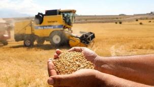 Talas ilçesinde boş araziler tarıma kazandırılıyor